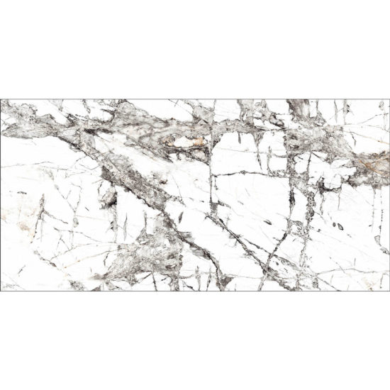 Invısıble Marble Grey and White 600x1200