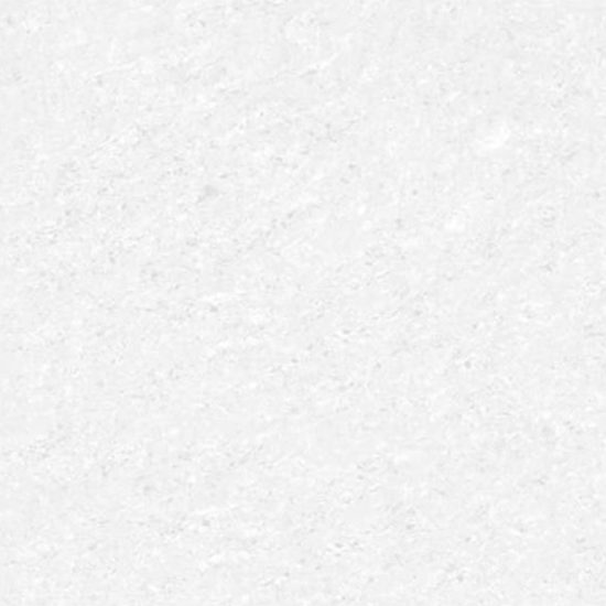 Tropix 600x600mm White Polished