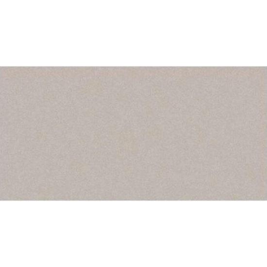 True 300x600mm Light Grey Matt